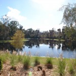 Water view in Artisan Park in Celebration Florida